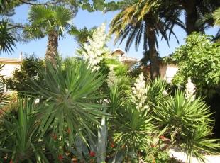 2-b-9-jardin-sanary-Bon-Abri